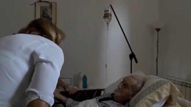 Morte Nonno Mariano, Nonno Mariano, Mariano Lucido, Palermo, Cronaca