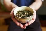 Dalla medicina cinese una pianta contro la 'fame perenne'