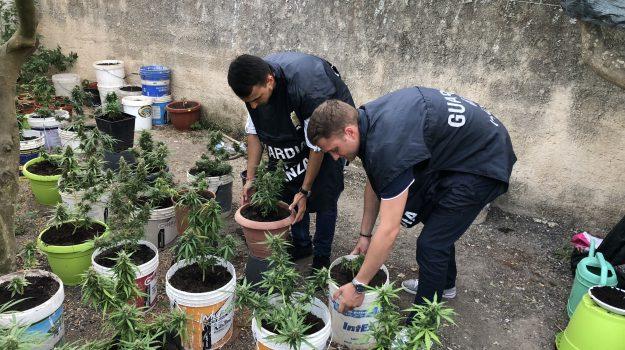 arresto droga mazara, marijuana a Mazara, Trapani, Cronaca