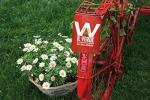 'ViVi il verde' a scoperta giardini E-R