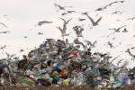 Rifiuti: Ue, target riciclo 2020 a rischio in 14 Paesi