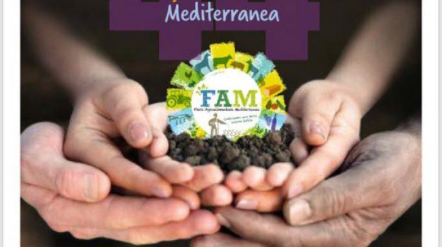 44esima Fiera Agroalimentare Mediterranea, ragusa agroalimentare, Calogero Fasulo, Francesco Ferreri, Ragusa, Società