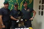 Tir con 25 chili di hashish fermato a San Gregorio di Catania, un arresto