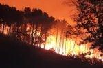 Incendio nel Pisano, a fuoco il monte Serra: 700 persone costrette a evacuare
