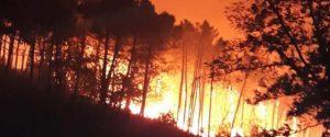 Incendio nel Pisano, a fuoco il monte Serra: 500 persone costrette a evacuare