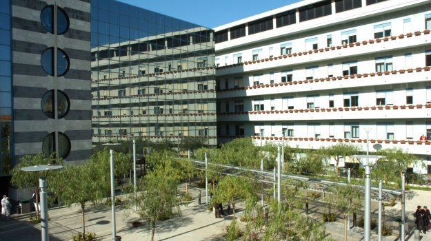 ospedale giglio cefalù ambulatorio oncoematologia, Palermo, Cronaca