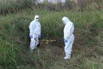 Caltanissetta, trovato documento di uno straniero vicino ai resti umani in contrada Palombara