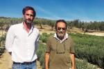 Il dolcificante a zero calorie nasce in Sicilia: a Castelvetrano il primo impianto di stevia