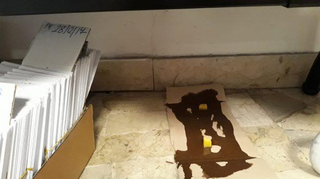 topi, ufficio anagrafe palermo, Palermo, Cronaca