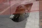Voragini per strada, Palermo tra le 4 città peggiori d'Italia: registrati 72 casi