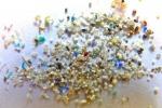 Non più solo nei cibi, le microplastiche ora trovate anche nell'uomo