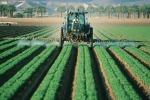 Le imprese agricole italiane hanno bisogno di una forte tutela in vista delle prossime scadenze in ambito europeo. E' l'appello lanciato dal presidente di Confagricoltura, Massimiliano Giansanti  (fonte: Pxhere)
