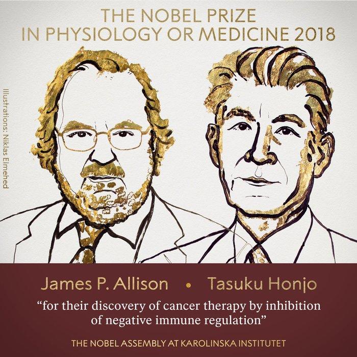 Premio Nobel per la Medicina a due ricercatori