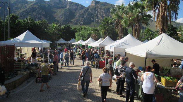 festa dei sapori contadini palermo, Palermo, Cultura