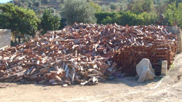 bosco area demaniale, diga disueri, Caltanissetta, Cronaca