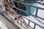 Sfonda con l'auto la vetrina di una farmacia a Palermo: il video dopo lo schianto