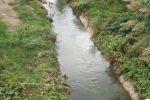 Salvare il fiume Oreto, parte la campagna del Fondo Ambiente Italiano