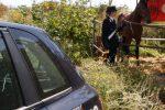 Corsa a cavallo nella circonvallazione di Monreale: tre denunciati