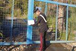 Appicca il fuoco ai rifiuti in una cava a Castelmola: arrestato