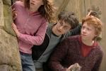 Harry Potter compie 20 anni, una mostra celebra il fenomeno mondiale