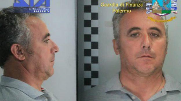 Maxi piantagione a Partinico, sequestrate sei tonnellate di marijuana