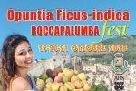 A Roccapalumba la 19esima edizione del Festival del Fico d'India