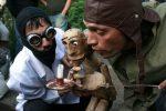 Il teatro a misura di bambino: i nuovi spettacoli al museo delle Marionette di Palermo