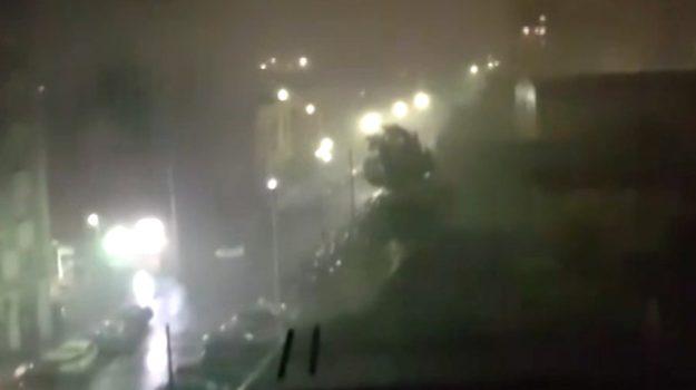 Violento temporale si abbatte su Palermo: alberi caduti e danni