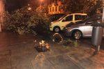Maltempo a Palermo, tombini in tilt e alberi caduti: crolla anche un palo della luce
