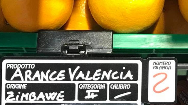 arance africane, confragricoltura, invasione, Gerardo Diana, Giovanni Selvaggi, Sicilia, Economia