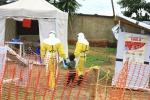 Ebola: Oms, epidemia si allarga ma basso rischio per l'Ue