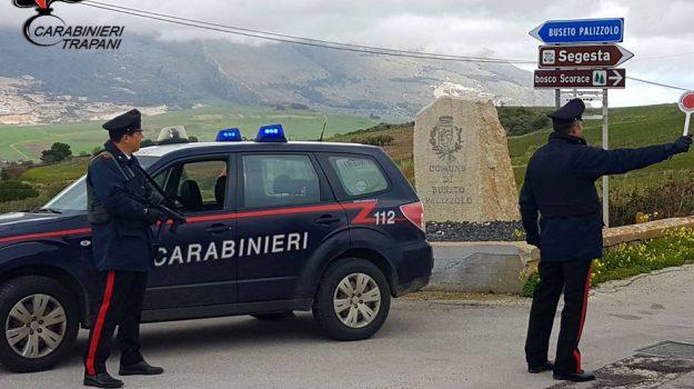 uccide un cane a Buseto Palizzolo, Trapani, Cronaca