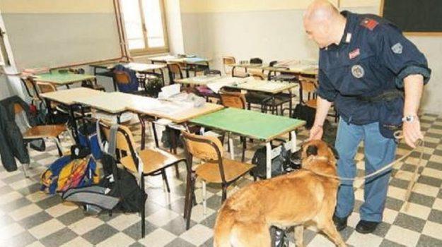 controlli scuole canicattì, Agrigento, Cronaca