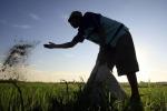 Domani si celebra la Giornata mondiale dei fertilizzanti