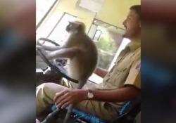 Accade in India, filmato con un telefonino in un autobus dello stato del Karnataka, Bangalore