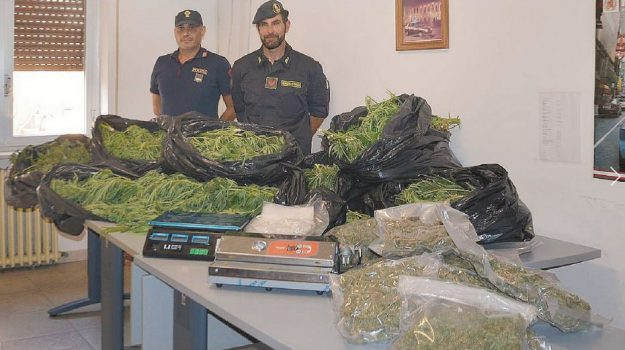 serra cannabis licata, Agrigento, Cronaca