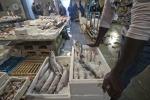 Mercato ittico a Siracusa, arriva finanziamento da 3 milioni