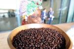 Dalle montagne del Ruanda a New York l'Oscar del caffe'