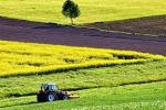 Rischiano di tornare nelle casse di Bruxelles finanziamenti europei per lo sviluppo rurale in grado di attivare finanziamenti pubblici per 120 milioni di euro (fonte: Pixabay)