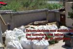 Corruzione al cimitero di Bagheria, il video dello scambio di tangenti