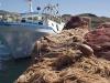 Da Parlamento europeo ok a riduzione pesca acciughe e sardine in Adriatico