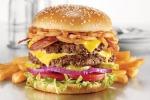 Hamburger (fonte: Michael Stern)