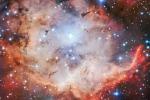 Una zona di formazione di stelle nella nebulosa del Teschio, NGC 2467, fotografata dal Very Large Telescope dell'Eso (fonte: ESO)