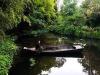 Monet e le ninfee, unossessione amorosa