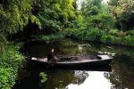 Monet e le ninfee, un'ossessione amorosa