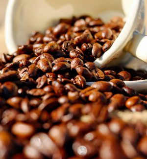 Scritta nel Dna la passione per il caffè, ecco cosa spiega uno studio