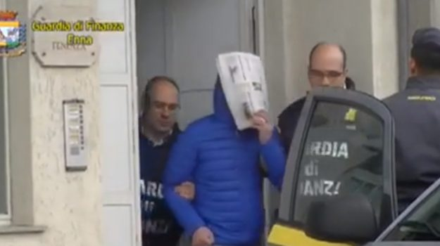 Parco dei Nebrodi, la mafia nei pascoli: il video dell'operazione