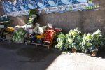 Palermo, sequestrati 430 chili di frutta in via Olio di Lino