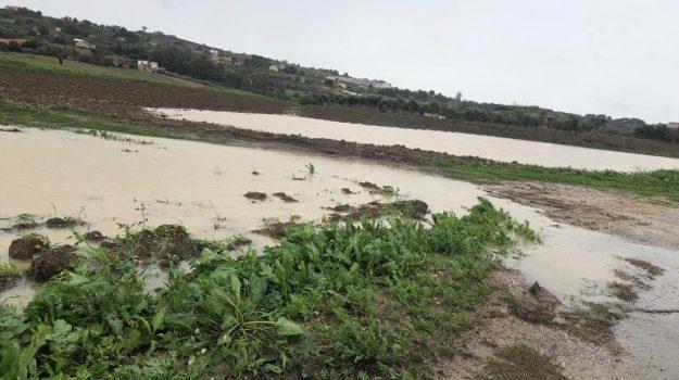 Maltempo, Sicilia, Economia
