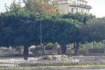 Villa di Noto, 100 mila euro per recuperare la fontana